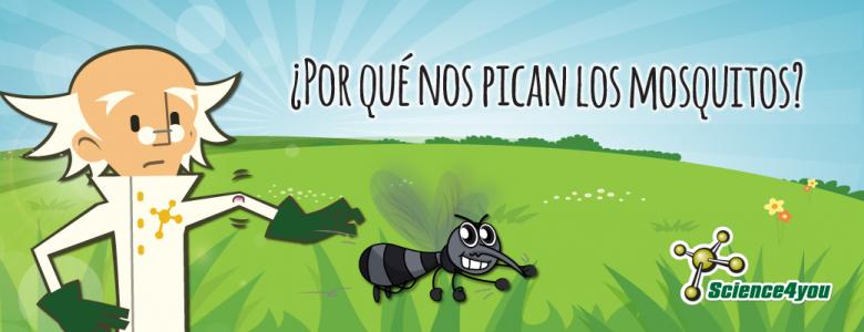 Picadura mosquitos