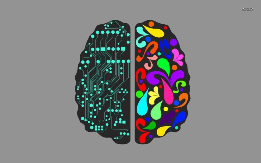 Cerebro zurdos o diestros
