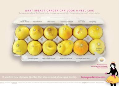 Campaña Conoce tus limones