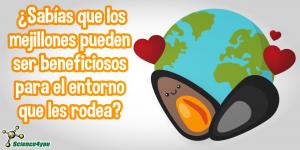 Mejillones: los amigos del medioambiente